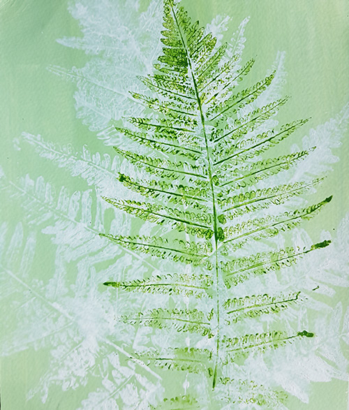 Art by Camilla Lekebjer. Monoprint: Fern
